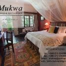 Ads & Marketing - Hotels & Tourism