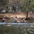 08_SZmR.9808-Rowing-&-Zambezi-Wildlife-Cambridge-Crew-&-Elephant
