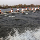 16_SZmR.0345-Rowing-on-Zambezi-UCT-Men's-Eight