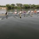22_SZmR.9788-Rowing-on-Zambezi-Cambridge-Alumni-Men's-Eight