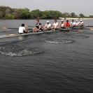 26_SZmR.9912-Rowing-on-Zambezi-Oxford-Alumni-Men's-Eight