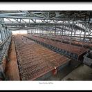 014_Min.0391-Mining-Show-Exhibition-Print-size60cm-Mopani Mines