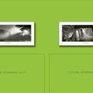 006_Advisory-&-Tax-Olive-Wall-No.2-size4m-PWC