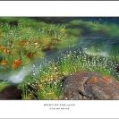 021_LZm-PWCL.200-Panoram-PWCic-Fine-Art-Print-on-Canvas-size1.5m-PWC