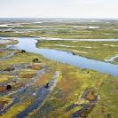 014-LZmW.1425-Barotse-Flood-Plain,-Zambezi-River