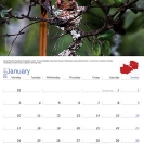 005_Page2+3-open-calendar-page-with-corporate-branding
