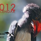 001_Page1-Cover-Crowned-Hornbill