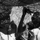 008_Pg3-Fishing-Baskets-Luapula-River-N-Zambia