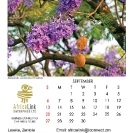 023_Artwork-Pg10-Sept-Jacaranda