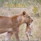 001_Artwork-Pg1-Cover-Lioness-&-Cub