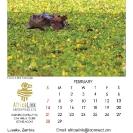 005_Artwork-Pg3-Feb-Hippo-in-Nile-Cabbage