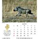 007_Artwork-Pg4-March-Warthog