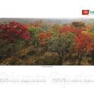 004_African-Spring-Corporate-Wall-Calendar-for-ZNCB-Bank-Pg2