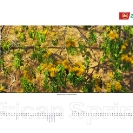 006_African-Spring-Corporate-Wall-Calendar-for-ZNCB-Bank-Pg3