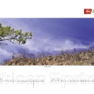 008_African-Spring-Corporate-Wall-Calendar-for-ZNCB-Bank-Pg4