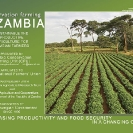 004-Agric-Project-Project-Wall-&-Desk-Calendars 2010
