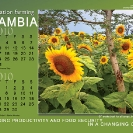 006-Agric-Project-Project-Wall-&-Desk-Calendars 2010