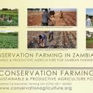 005-Agric-Project-Desk-Calendar-2011-CFU-Page2