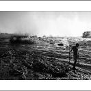002_LZmS.2880BW-Zambezi-R-at-Victoria-Falls
