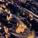 009_LZmS.1340V Basalt & Grass Batoka Gorge Zambia