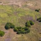 005_AgW.1393-Agric-Wetlands-Farming
