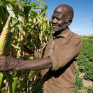 007_AgCF.0025-African-Conservation-Farmer-&-Crops-Zambia