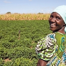 019_AgCF.0587-African-Conservation-Farmer-&-Crops-Zambia