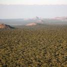 026_LZmMut.2961-Mutinondo-Wilderness-aerial-Zambia