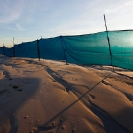 052_CM.1999-Mine-Waste-Dump-Windbreak