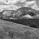 Landscape Africa B+W