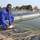 Mining-Congo2-Assignment