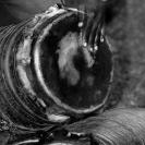 027_CZmM.1530VBW-African-Drums-#2-Zambia