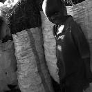 015_FTD.5291VBW-Charcoal-Burning-Zambia