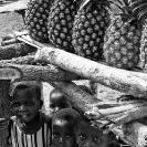 024_PZmNW.9000BW-Pineapples-NW-Zambia