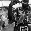001_PZmC.4181BW-Mole-Rat-Seller-Zambia