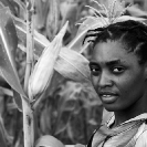 008_AgCF.0296BW-Woman-Conservation-Farmer-&-maize-crop-Zambia