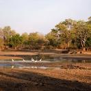 021_LZmE.0669-Lagoon-Luangwa-Valley-E-Zambia
