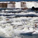 013_LZmL.7248-Fisherman-&-White-Water-Luapula-R--N-Zambia