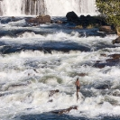 016_LZmL.7256V-Fisherman-&-White-Water-Luapula-R--N-Zambia