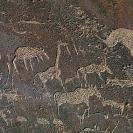 011_RANm.13-San-Late-Stone-Age-Rock-Pictograph#2-Namibia