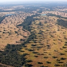 006_FTD.1613-Deforestation-for-Commercial-Farming-Zambia-aerial