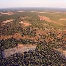 017_FTD.2696-Slash-&-Burn-Deforestation-Zambia-aerial