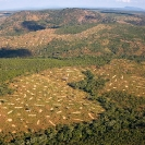 019_FTD.2777-Slash-&-Burn-Deforestation-Zambia-aerial