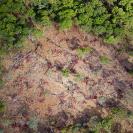 030_FTD.2566[rev2]-Slash-&-Burn-Deforestation-Zambia-aerial