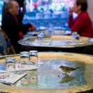 004_UFr.1651-Bird-in-Cafe-Paris