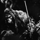 024_MApG.14BW-Highland-Mountain-Gorilla-Bwindi-Uganda
