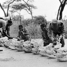 016_Po.BW.0082-07-EXTINCT-Black-Rhino-Skulls-&-SRT-Scouts-