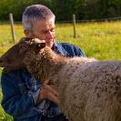 015_PSe.2449-Evert-Larsson-&-his-Helsingland-Sheep-Sweden