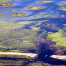 002_EnvF.1342-Floods-Zambezi-Road-&-Comms-Destruction